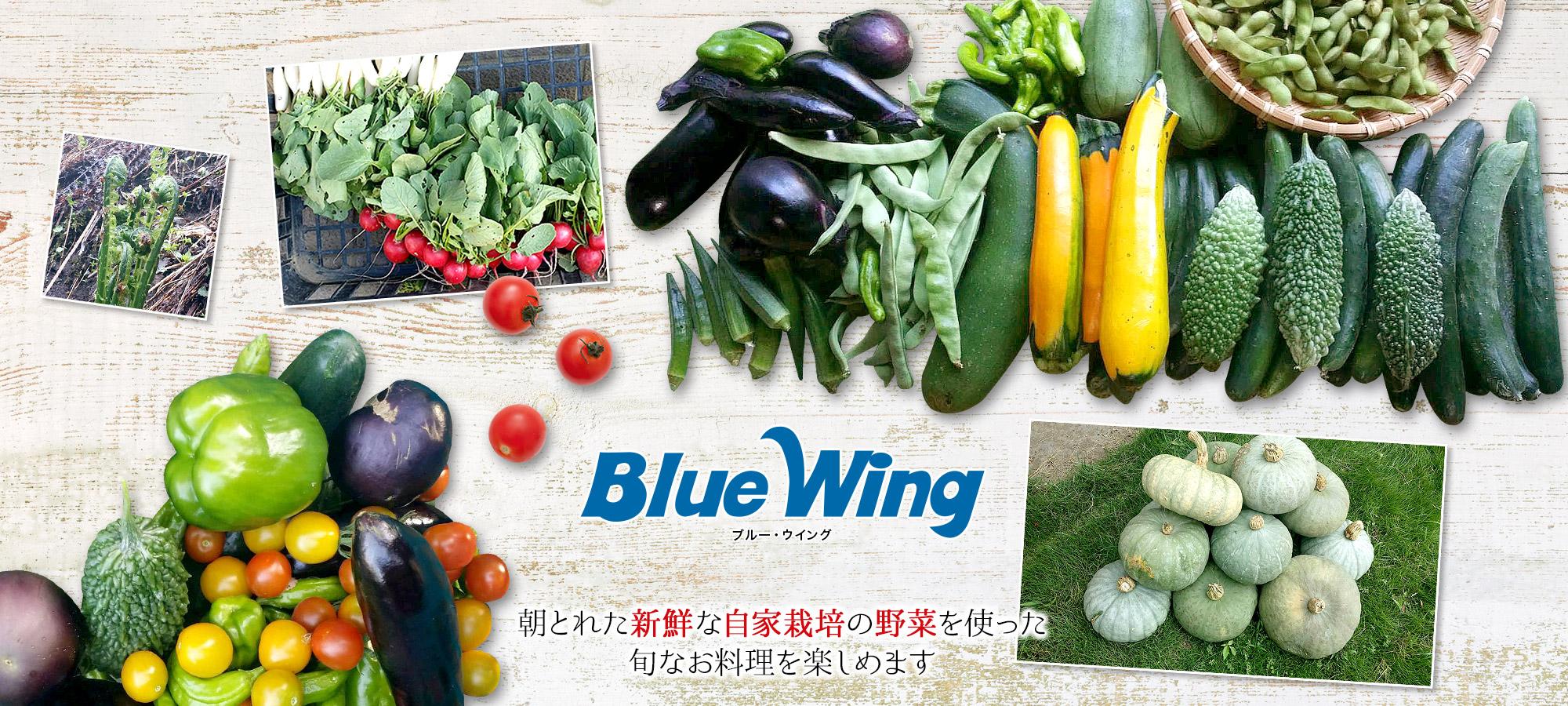 朝とれた新鮮な自家栽培の野菜を使った旬なお料理を楽しめます